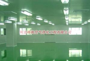 无菌制剂净化车间、河北峰帆净化(查看图)、石家庄 保定洁净室