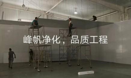 张家口净化板安装工程无菌厂房设计施工