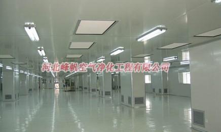 河北食品厂无尘车间装修的总体设计、厂房