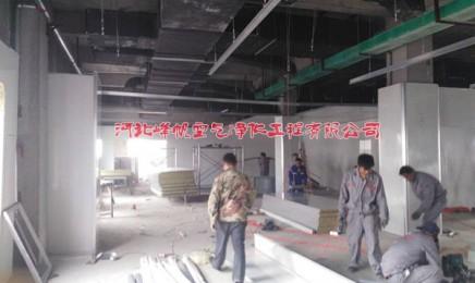河北春诚生物食品添加剂净化厂房施工现场