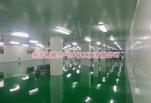 河北邢台石家庄净化厂房设计安装/食品净化车间设计施工