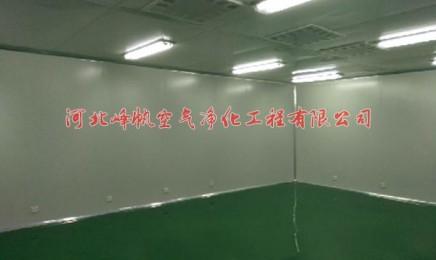 石家庄振联电子净化厂房工程