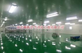 内蒙古乳品净化车间肉制品净化厂房设计施工河北峰帆净化工程更专业