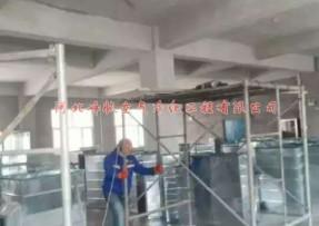 河北大凤金食品净化车间施工现场