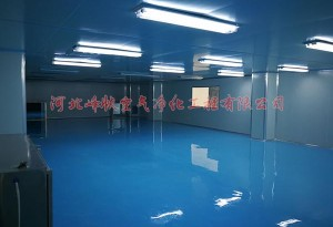 河北邯郸糖果净化厂房、糕点净化厂房设计施工