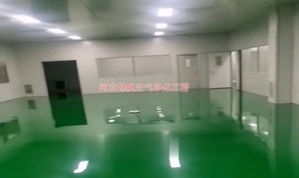 施工完成的净化厂房视频